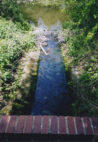 Boundary Walk – Part Nine – Leam to the Dell