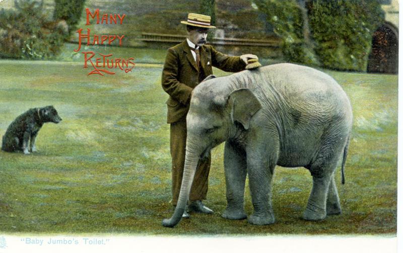 Sam Lockhart, Elephant Trainer Extraordinaire
