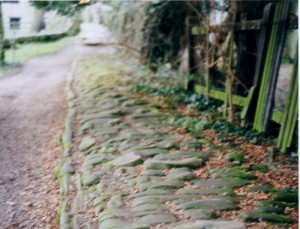 A Curious Footpath