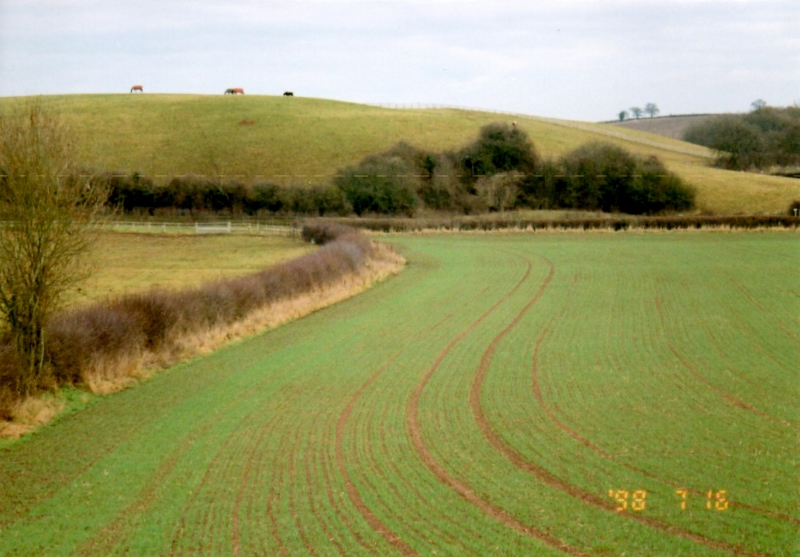 Remnants of Ridge and Furrow Fields in Leamington Priors